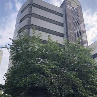 恵比寿NEONATO ANNEX